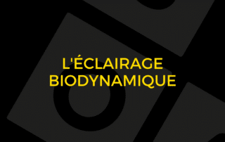 L'éclairage biodynamique - Visual Timing Light 2